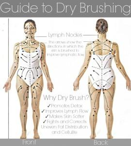 Lymph Flow Guide