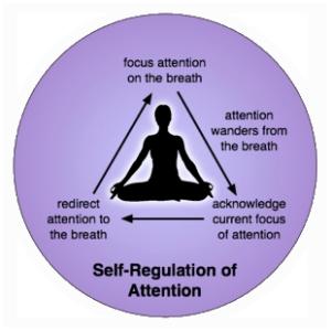 meditation-attention-regulation
